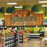 Organic grocer Sprouts holding off on putting down roots in Florida