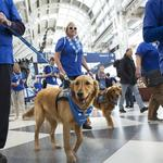 Four-legged friends introduced at Bush Intercontinental