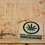 Report: legal marijuana brings 'new energy' to black market