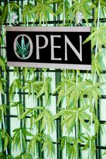Feds issue more guidance on marijuana banking, but legality remains unclear
