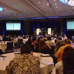 Hawaii Startup Paradise goal: Be like Star Wars, leaders of accelerators say
