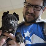 Why this San Antonio-based no-kill animal shelter aims to run lean like a tech startup