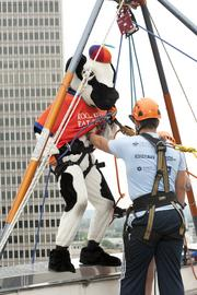Mr. Chikin was helped down for the event.
