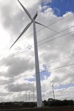 NextEra Energy forms Hawaii division to develop wind, solar projects