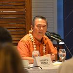 Hawaii legislators scrutinize HTA, auditor Les Kondo in informational hearing on recent audit