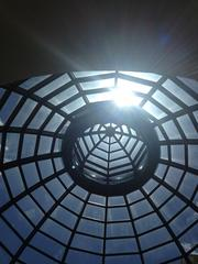 Ooooh. Remember that dome I told you about? Check out the source of the awesome shadows: a 40-foot glass ceiling.