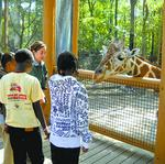 Two top executives named to Birmingham Zoo Board of Directors