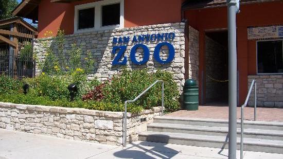 San Antonio Zoo Hires Seaworld Veteran Charles Claville