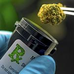Central State joins Hocking College seeking to become Ohio medical marijuana testing lab