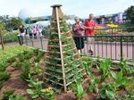 How edible landscapes changed a major Disney event (Video)