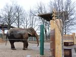 Louisville Zoo receives $2 million gift