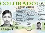 New look for Colorado driver's licenses and IDs rolling out soon