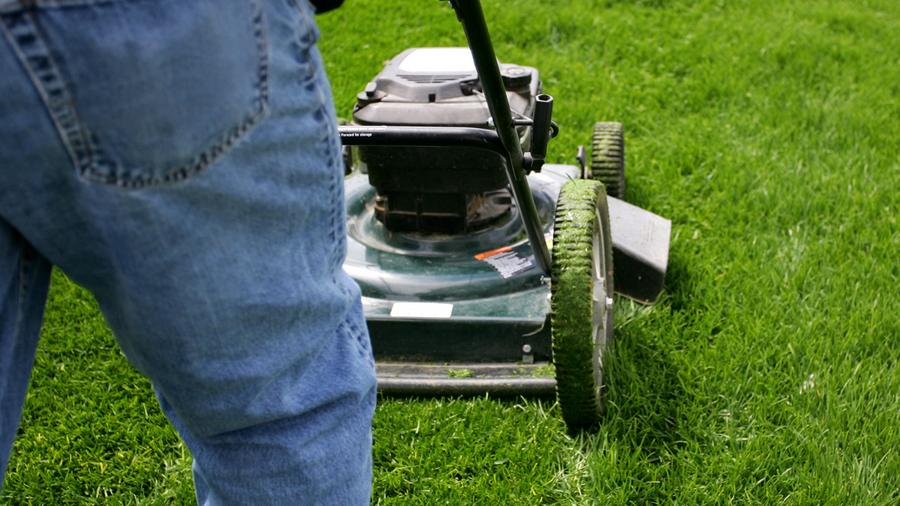 Business Pulse Poll Who Mows Your Lawn Dayton Business