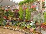 Take a tour of this year's Cincinnati Flower Show: PHOTOS