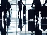 The bag man returns to make sense of luggage brands