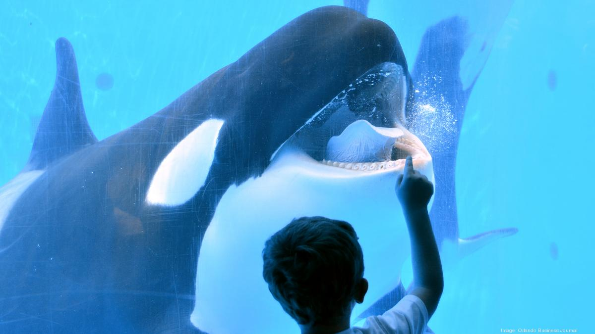 Florida's SeaWorld Entertainment Inc. names CEO, CFO and more - Orlando Business Journal