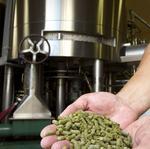 KC craft beer scene buzzes with activity