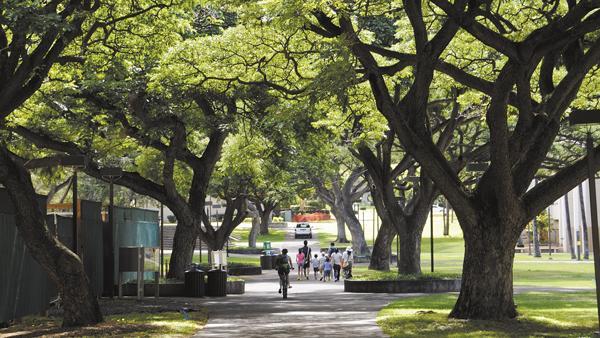 Nursing Schools In San Antonio >> University of Hawaii online nursing program rises 10 places on U.S. News & World Report ranking ...