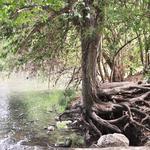 San Antonio River Authority is under new leadership