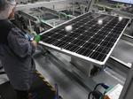 Oregon Congressional Democrats back SolarWorld in trade action