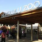 Honolulu Zoo launches sponsorship program more than two years after it became legal