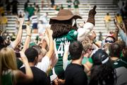 Charlotte 49ers mascot Norm the Niner leads fans in a cheer at midfield after the big victory. The 49ers beat the Campbell Fighting Camels 52-7 in their inaugural football game at Jerry Richardson Stadium, on Aug. 31, 2013.