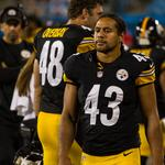 Polamalu, Roethlisberger merchandise among NFL's best sellers