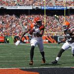 Three Bengals, Browns players ranked among 100 best in NFL