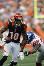 Bengals get deadline extension to sell out game, avoid blackout