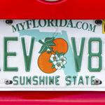 Florida justices give green light to stops over license plates