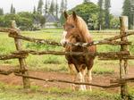 Four Seasons Resort Lanai opens adventure center to dispel myth of 'nothing to do' on Lanai