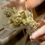 Tacoma orders dozens of medical marijuana shops to close