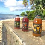 Shaka Tea completes first angel round of investment