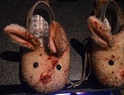 Look, bunnies! Bunnies are fun, right?