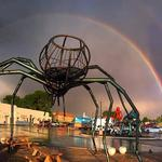 Meow Wolf sets record-breaking day
